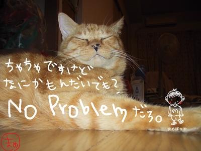 Neko_022_8